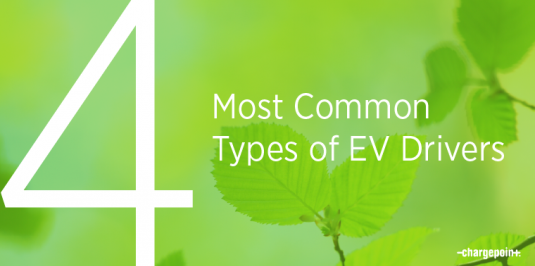 4 most common types of EV drivers